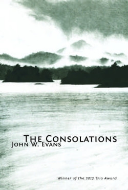 Book Review: 'The Consolations'