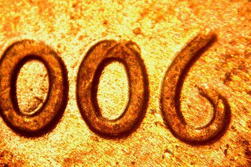 2006 1c WDDO-042 __UNC__RB