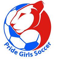 Prode Logo 2019 JPG.jpg