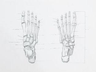 Toe-Drawing-300x225.jpg