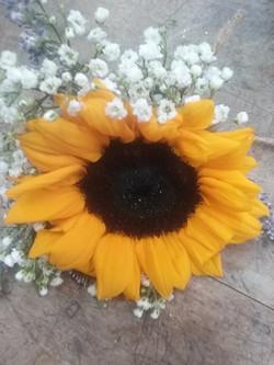 sunflower_boutineer