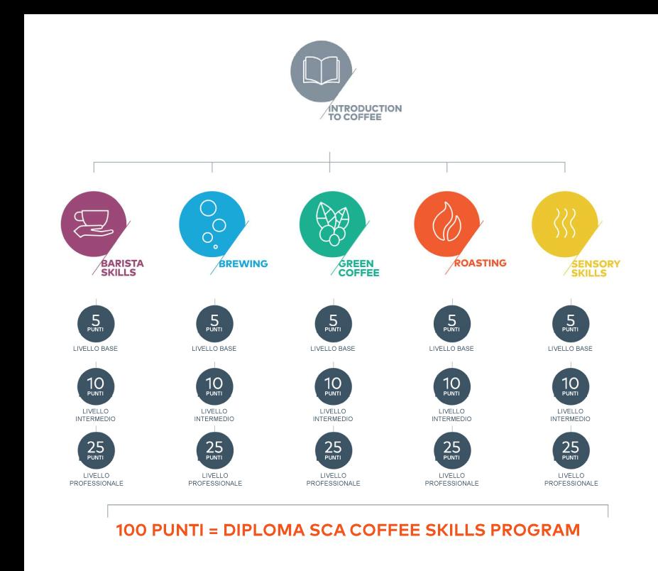 CSP-diagramma.png