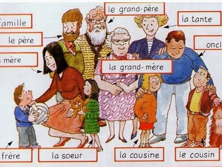 Lesson #7 #8 : Family Members