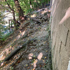 Footer Exposed Due to Slope Instability