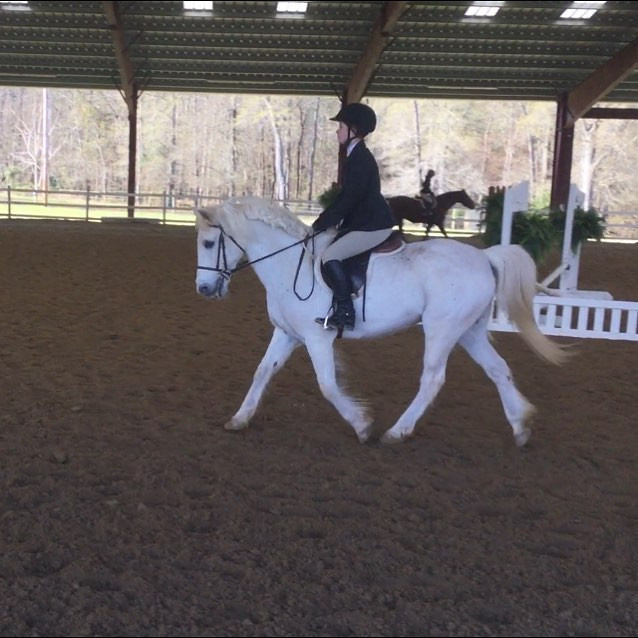 Maggie Sandbeck and Prince Caspian in one of their flat classes