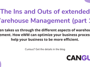 The Ins and Outs of extended Warehouse Management (part 1)