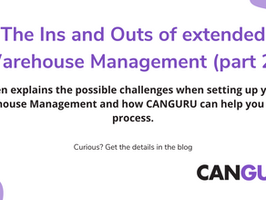 The Ins and Outs of extended Warehouse Management (part 2)