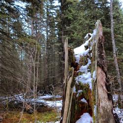 Duck Lake Trails, Saskatchewan