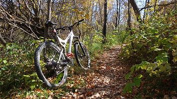Buffalo Pound Provincial Park Biking