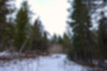 Eb's Trail Hiking Saskatchewan