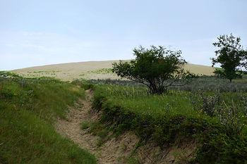 Saskatchewan hiking sandhills provincial park
