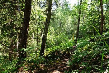 gem lakes narrow hills provincial park