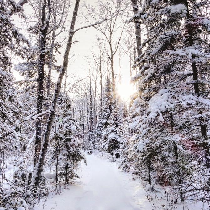 5 Reasons Why Saskatchewan Winter's Don't Suck