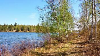 saskatchewan hiking, hiking in anglin lake recreation site, anglin lake