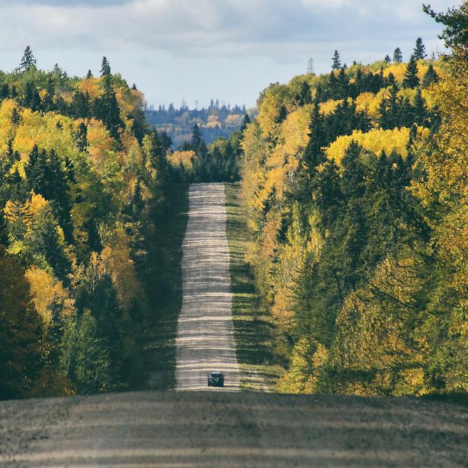 Fall for Fall at Prince Albert National Park