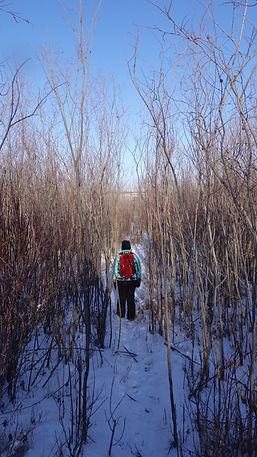 Maymont Conservation Area - Saskatchewan hiking