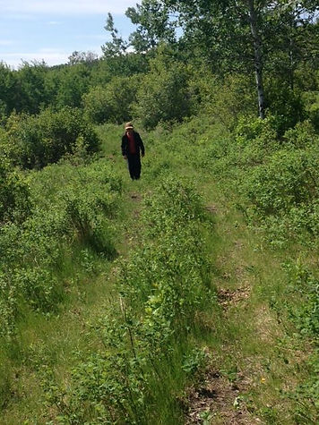 Kaposvar valley saskatchewan hiking