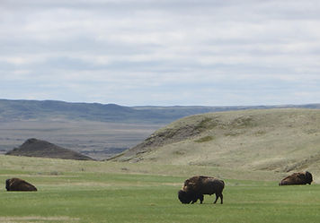 grasslands national park hiking