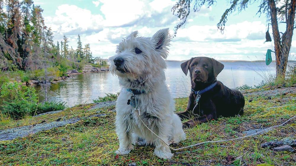 Nut Point Trail, Lac La Ronge Provincial Park