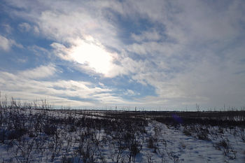 saskatoon northeast swale hiking