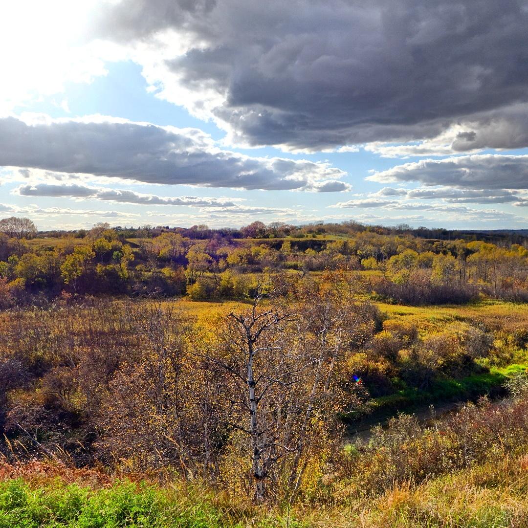 Beaver Creek, Saskatoon SK