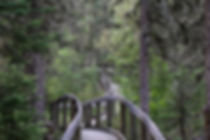 saskatchewan hiking prince albert national park
