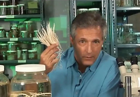 Image of host Charles G Messing holding a crinoid, from episode 1
