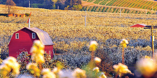 HR agriculture.jpg