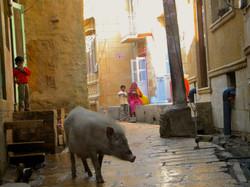 Watching, India 2010