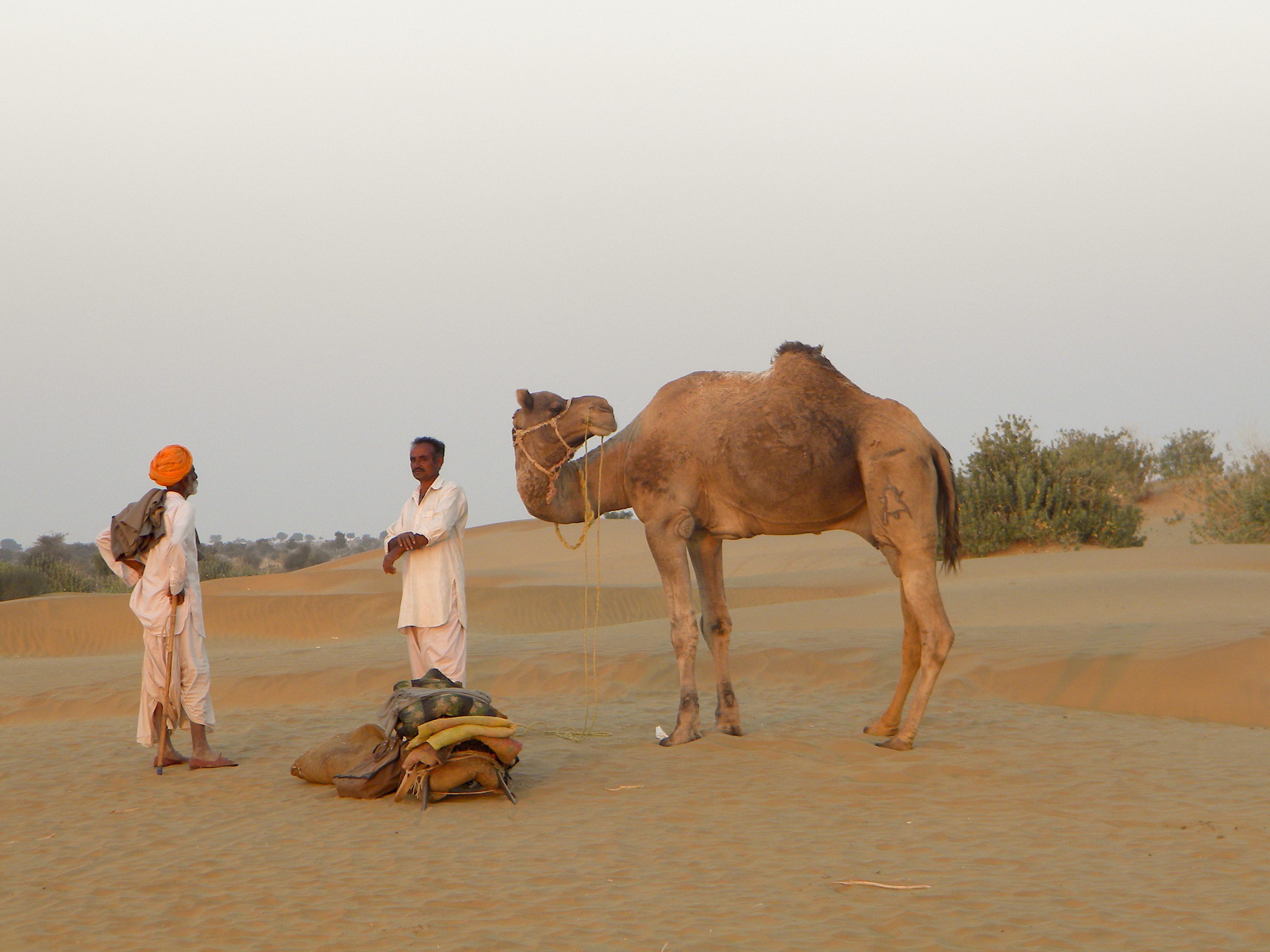 Quiet Desert, India 2010