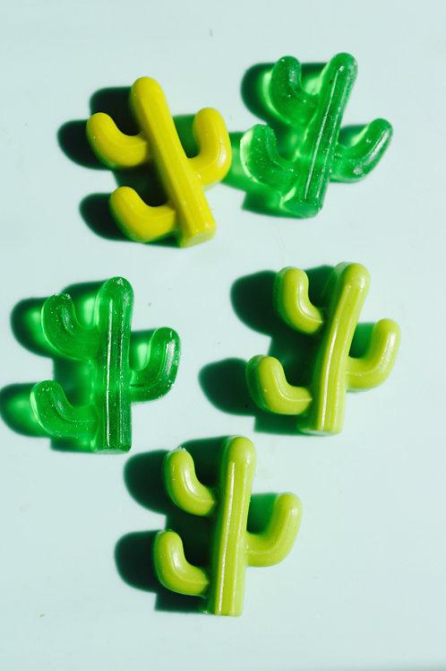 Tucson Cactus Soaps  (small)