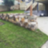 Branching out landscaping, northern beaches, sydney, driveway, paving