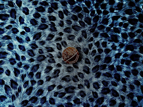 Rose & Hubble 100% Cotton Poplin Fabric -Jungle Leopard Animal print - Teal Blue
