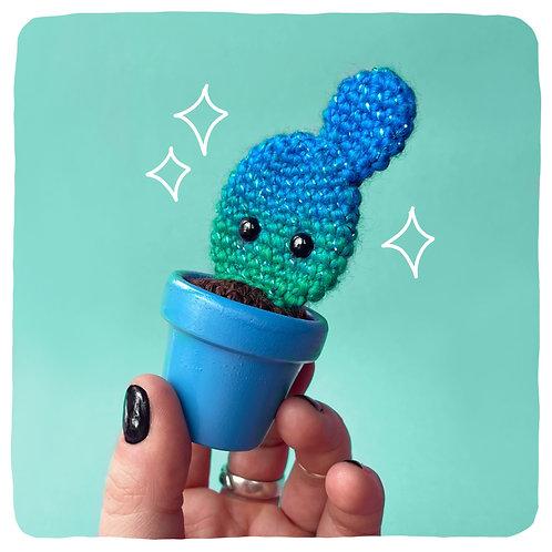 Jimbo the Mini Glitter Flat Cactus!