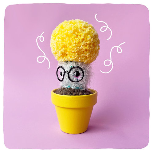 Clarence the Yellow Pom Cactus!