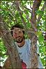 סער אוסטרייכר יער מאכל קדרון