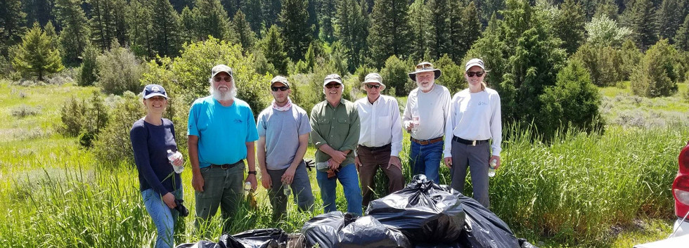 Gallatin River Weed Pull
