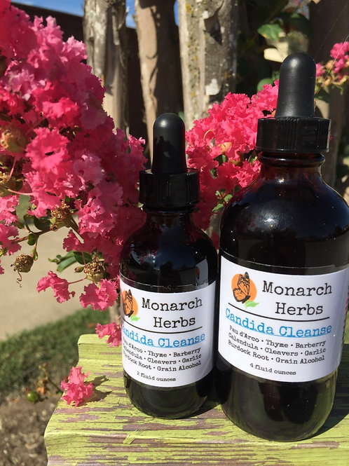 Candida Cleanse Tincture - Candida