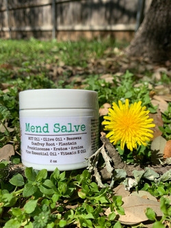Mend Salve - Bone & Tendon