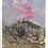 Thumbnail: The mountain never sleeps 3