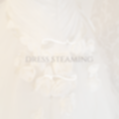 Dress steaming service.png