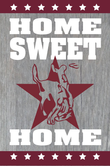 Home Sweet Home - Horse & Rider Star