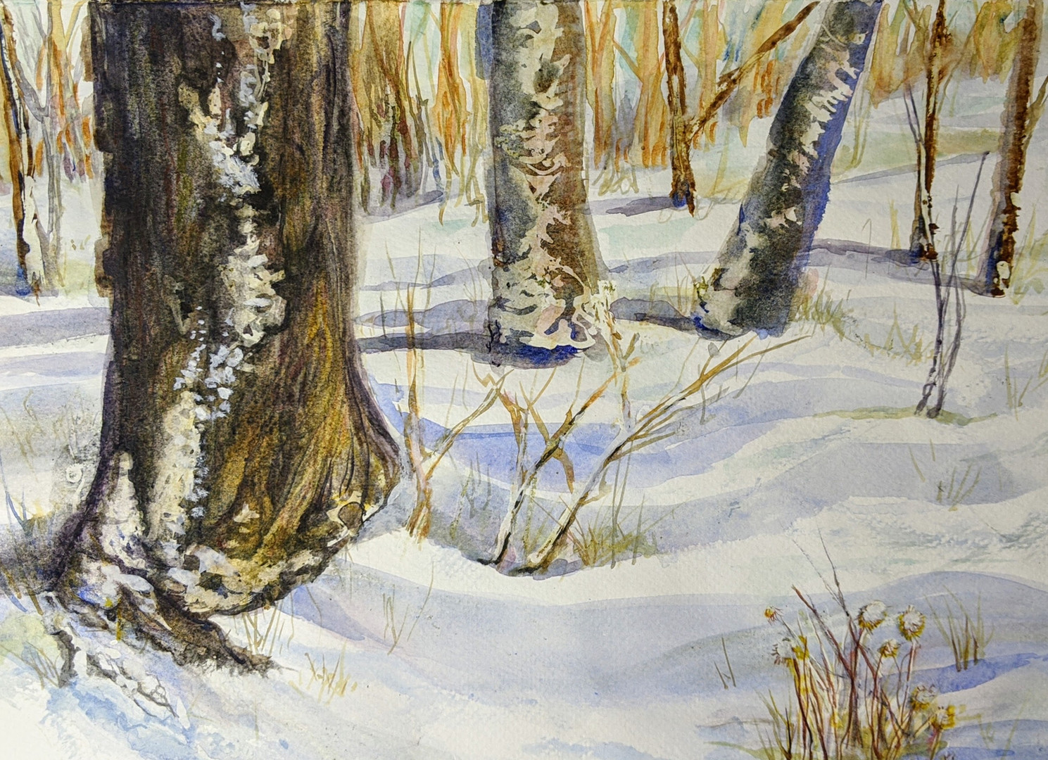 21-105: Watercolour Explorations