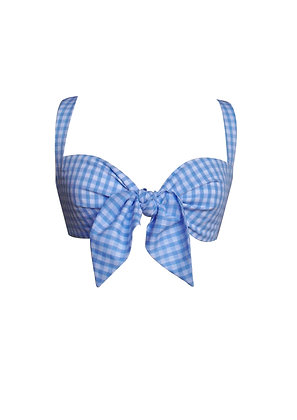 Small Gingham Tie Front Bra Top