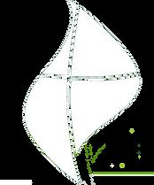 AMCOG Single Logo (1) (1) (1).png