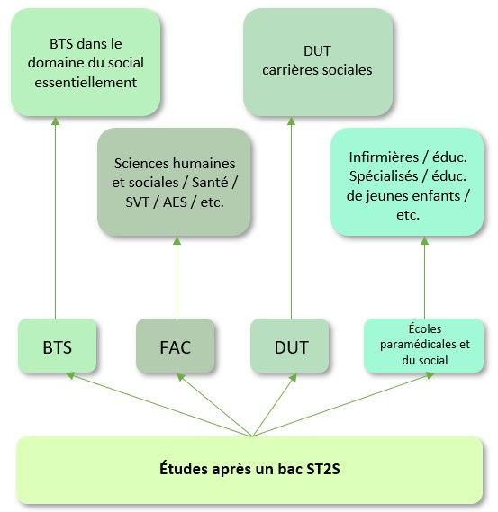 st2s.jpg