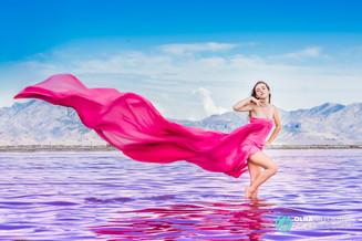 Pink Great Salt Lake