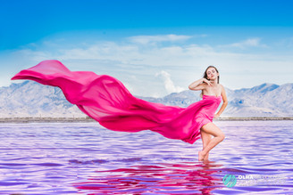 Pink Great Salt Lake