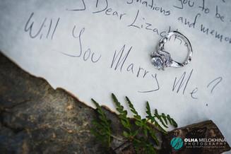 Beautiful proposal at Auburn CA
