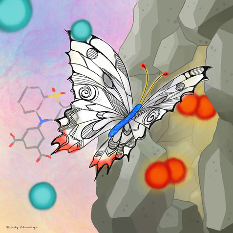 Butterfly-shaped gate for PCPs/MOFs / PCP/MOFに蝶形ゲート